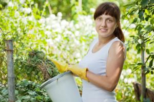 Bewerbung als Gärtner